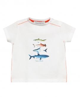 Camiseta Niño TARTINE ET CHOCOLAT Peces Detalles Rojo