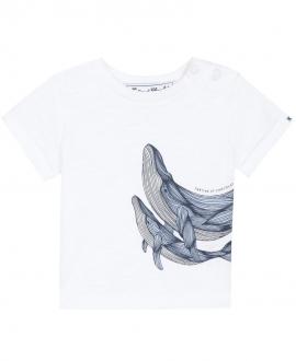 Camiseta Bebé Niño TARTINE ET CHOCOLAT Ballenas